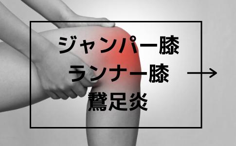 ジャンパー膝・ランナー膝・鵞足炎説明ページです。